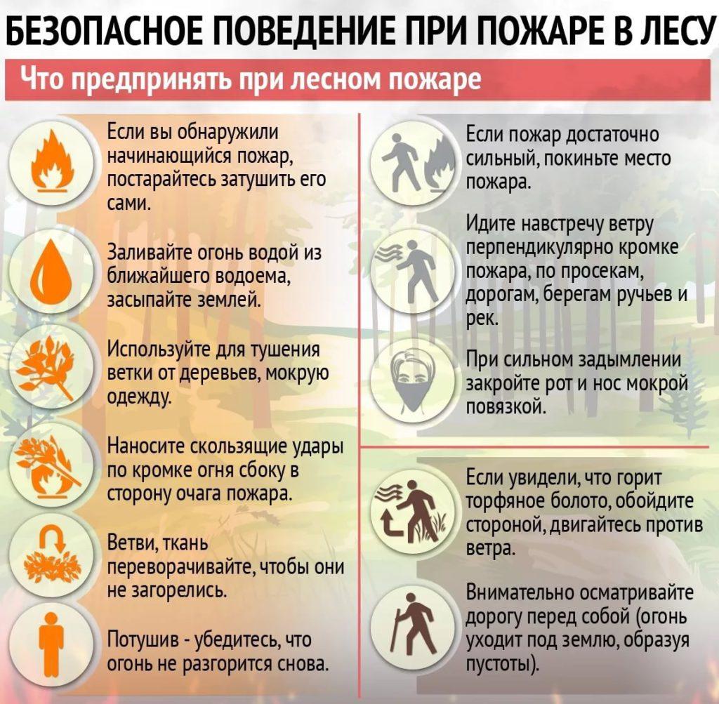Поведение при пожаре в лесу